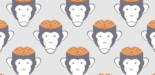 Manage the chimp